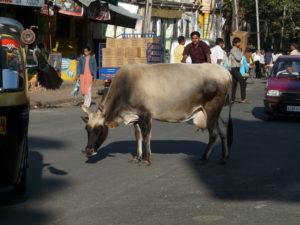 Het verkeer in India