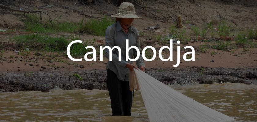 Cambodja | Reisverhalen en tips