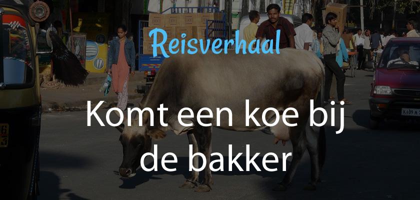 Komt een koe bij de bakker